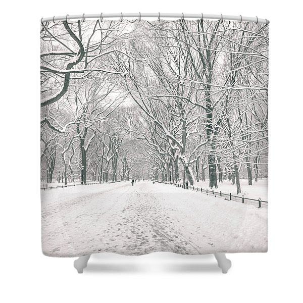 Central Park Winter - Poet's Walk in the Snow - New York City Shower Curtain by Vivienne Gucwa