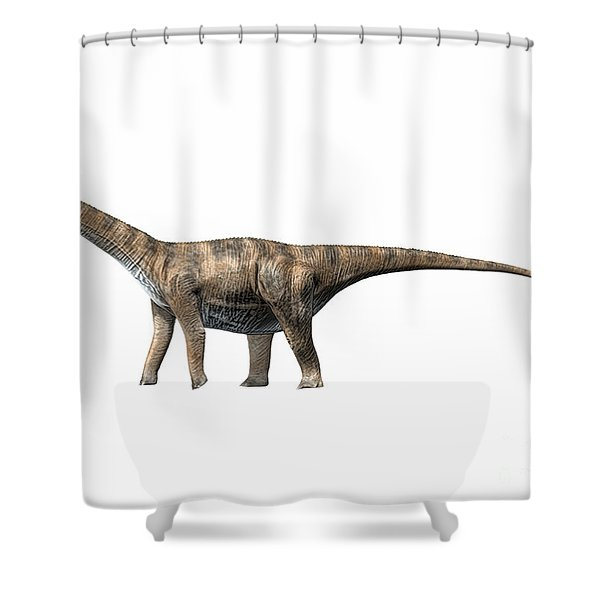 Cetiosaurus Oxoniensis, Middle Jurassic Shower Curtain by Nobumichi Tamura