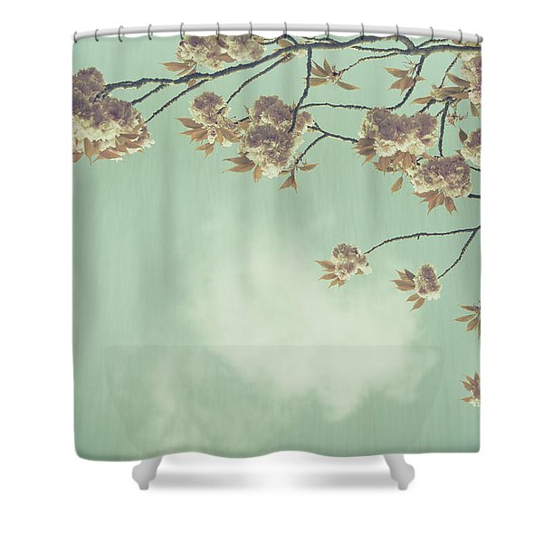 Cherry Blossom in Fulwood Park Shower Curtain by Nomad Art And  Design