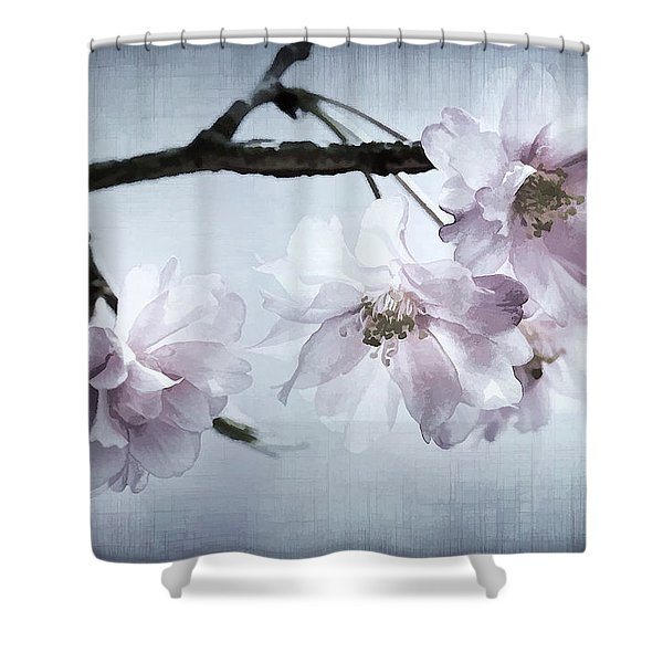 Cherry Blossom Sweetness Shower Curtain by Kathy Clark