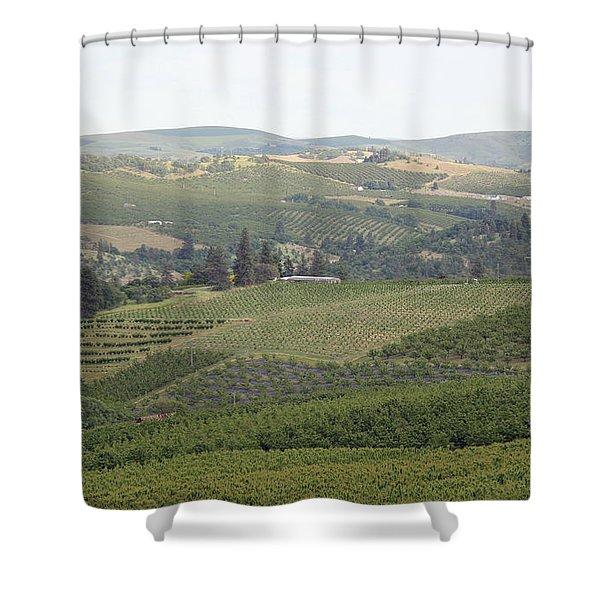 Cherry Orchards Shower Curtain by E Faithe Lester