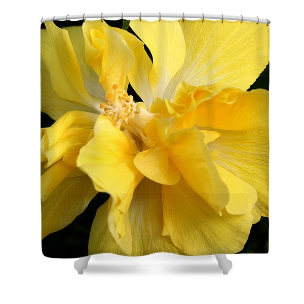 Chicago Botanical Gardens - 71 Shower Curtain by Ely Arsha