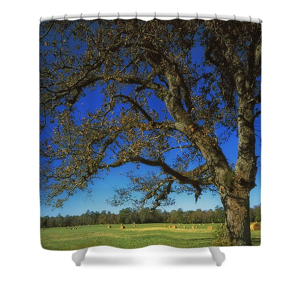 Chickamauga Battlefield Shower Curtain by Mountain Dreams