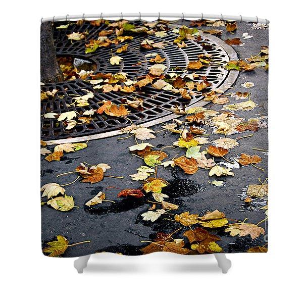 City Fall Shower Curtain by Elena Elisseeva