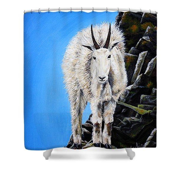 Cliffhanger Shower Curtain by Teshia Art