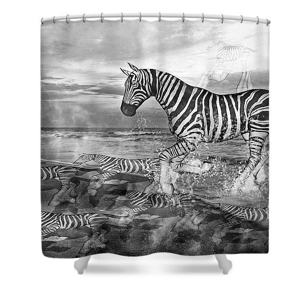 Coastal Stripes II Shower Curtain by Betsy C  Knapp