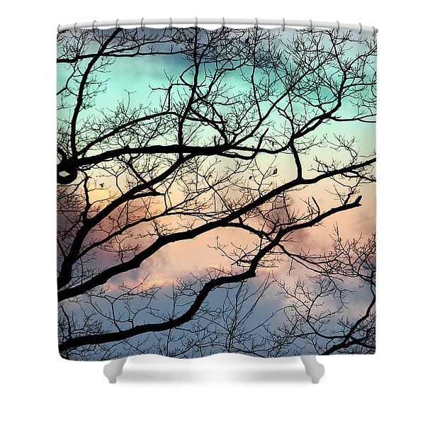 Cold Hearted Bliss Shower Curtain by Christina Rollo