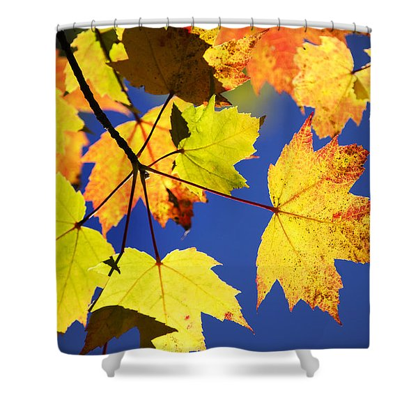 Colorful Autumn Maple Leaves Abstract Art Shower Curtain by Christina Rollo