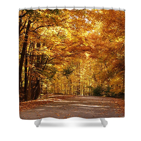Colorful Canopy Shower Curtain by Sandy Keeton
