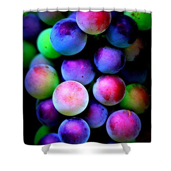 Colorful Grapes - Digital Art Shower Curtain by Carol Groenen