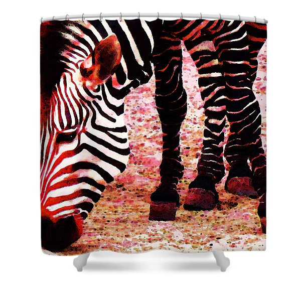 Colorful Zebra - Buy Black And White Stripes Art Shower Curtain by Sharon Cummings