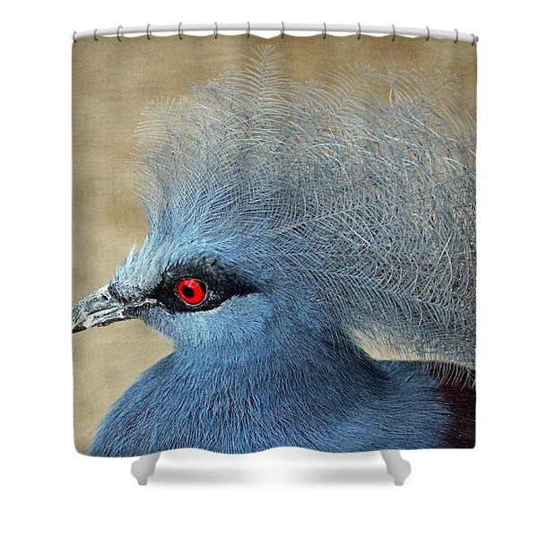 Common Crowned Pigeon Shower Curtain by Cynthia Guinn