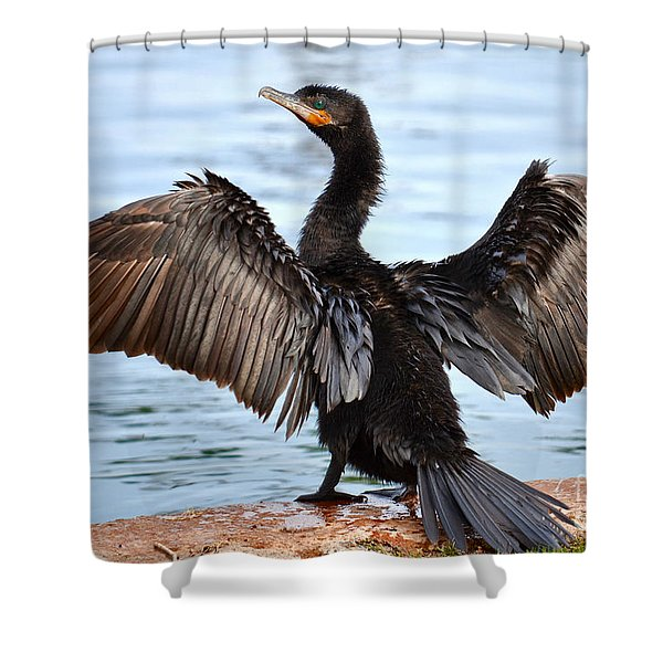 Conductor Shower Curtain by Deb Halloran