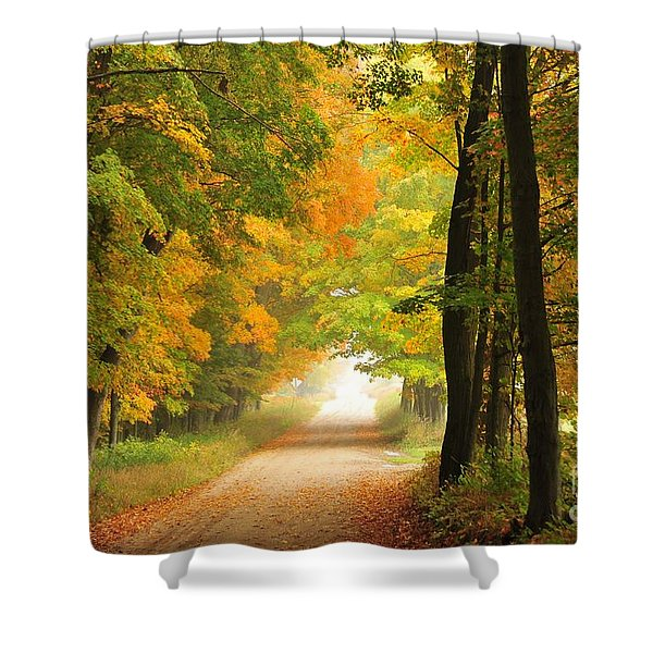 Country Road In Autumn Shower Curtain by Terri Gostola