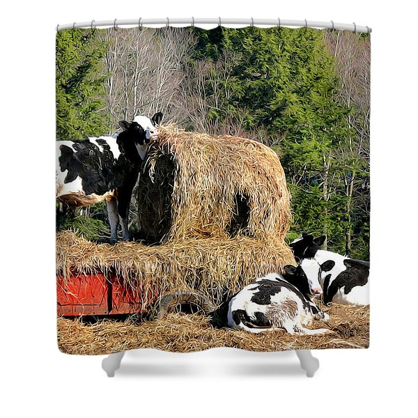 Cow Country Buffet Shower Curtain by Christina Rollo