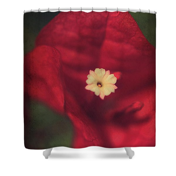 Cradle Me In Your Arms Shower Curtain by Laurie Search