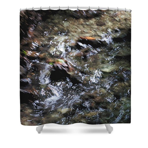 Creek Bed Shower Curtain by William Norton