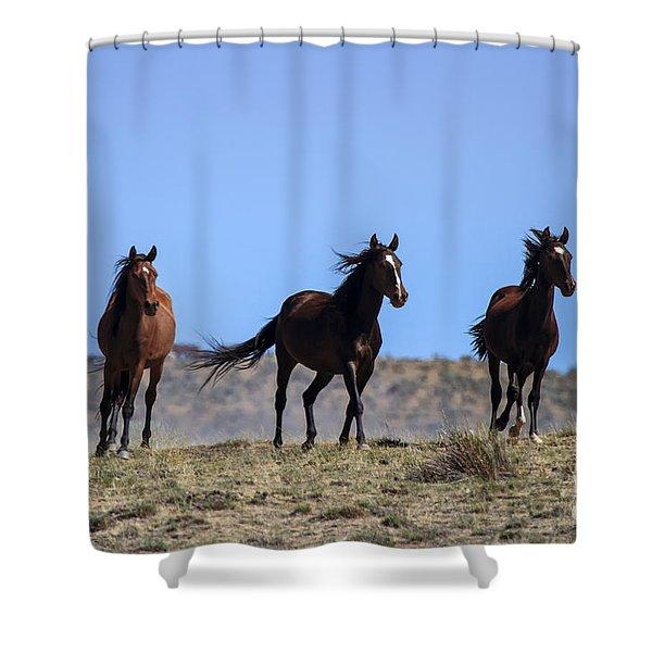 Cresting The Ridge Shower Curtain by Mike  Dawson