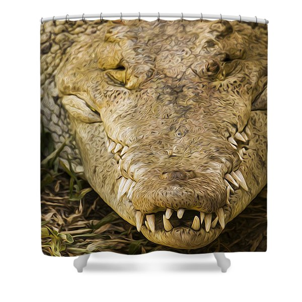 Crocodile Shower Curtain by Aged Pixel