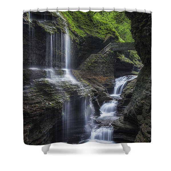 Crown Jewel Shower Curtain by Bill  Wakeley