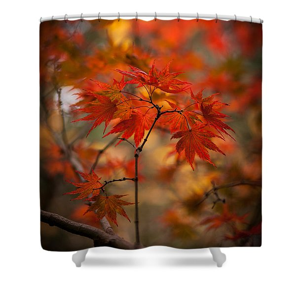 Crown of Fire Shower Curtain by Mike Reid