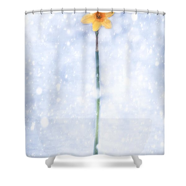 Daffodil In Snow Shower Curtain by Joana Kruse