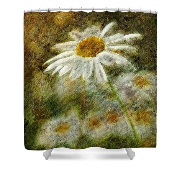 Daisies ... again - p11at01 Shower Curtain by Variance Collections