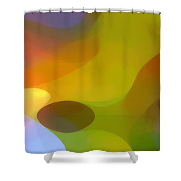 Dappled Light Panoramic 2 Shower Curtain by Amy Vangsgard