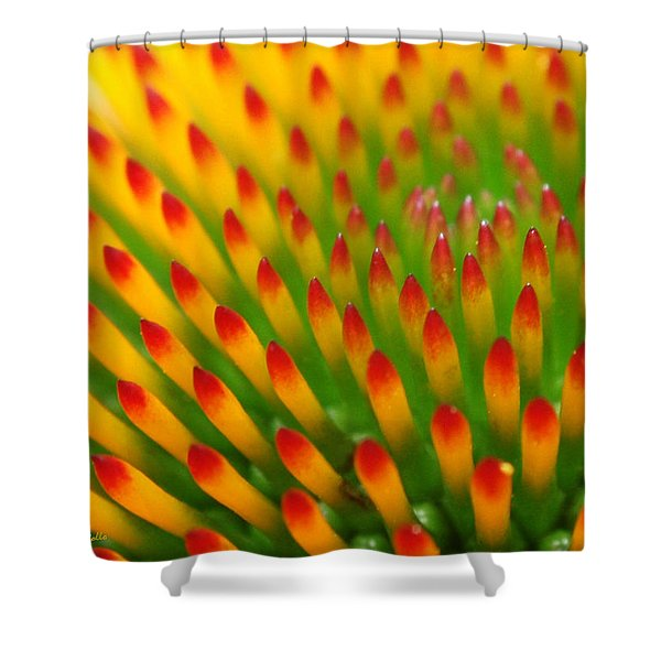 Deciphering Close Shower Curtain by Christina Rollo