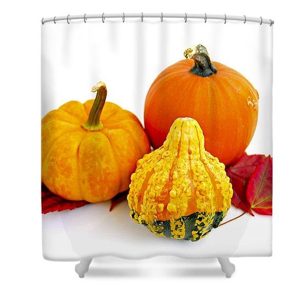 Decorative pumpkins Shower Curtain by Elena Elisseeva