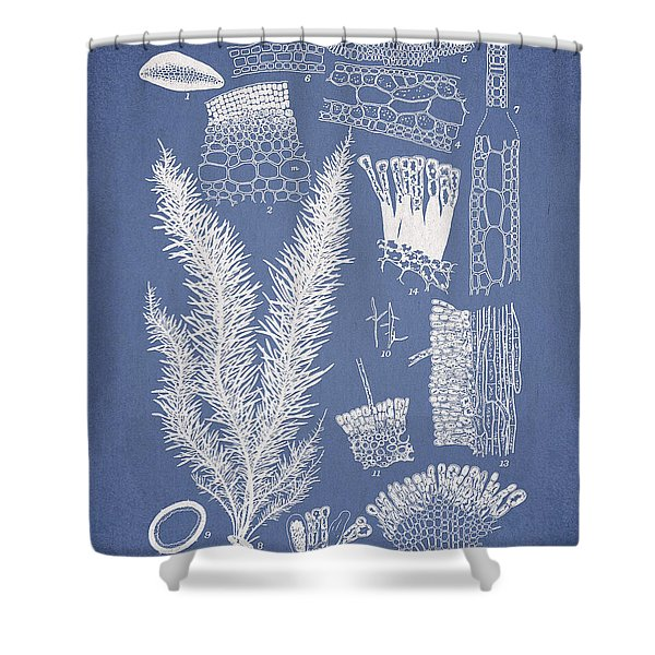 Delesseria Middendorfii and Chardaria abientina Shower Curtain by Aged Pixel