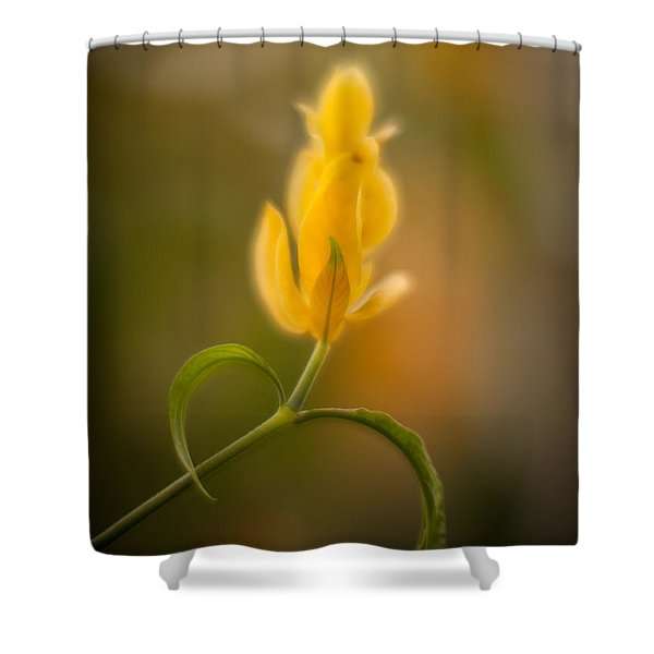 Delicate Fountain Of Gold Shower Curtain by Mike Reid