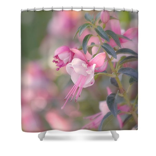 Delicate Shower Curtain by Kim Hojnacki
