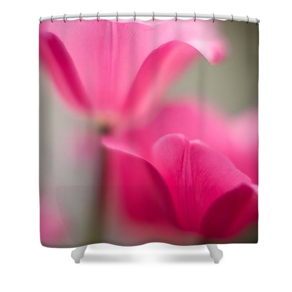 Delicate Tulip Curves Shower Curtain by Mike Reid