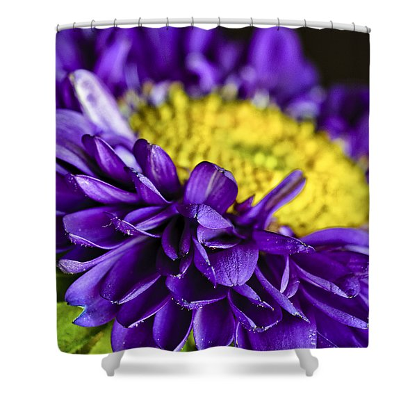 Delights the Eye Shower Curtain by Christi Kraft