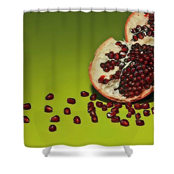 Departed Shower Curtain by Evelina Kremsdorf