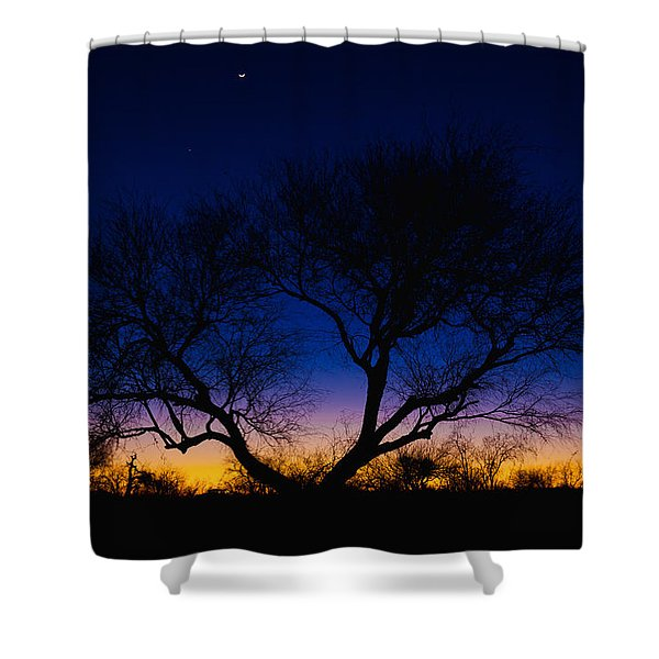 Desert Silhouette Shower Curtain by Chad Dutson