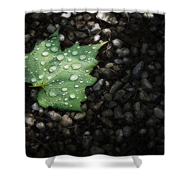 Dew on Leaf Shower Curtain by Scott Norris