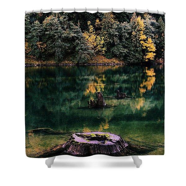 Diablo Lake Tree Stump Shower Curtain by Benjamin Yeager