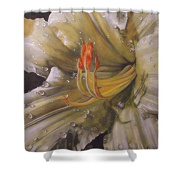 Diamonds Shower Curtain by Barbara Keith