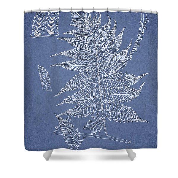 Diplazium jerdoni Shower Curtain by Aged Pixel