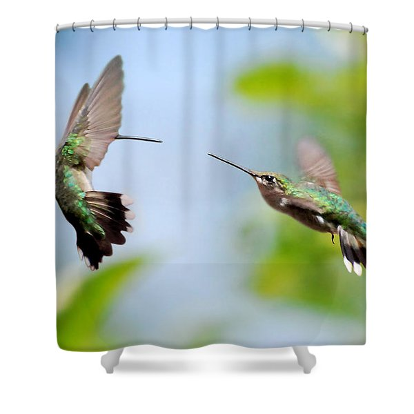 Direct Confrontation Shower Curtain by Christina Rollo