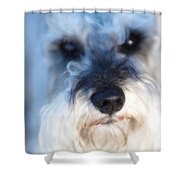 Dog 2 Shower Curtain by Wingsdomain Art and Photography