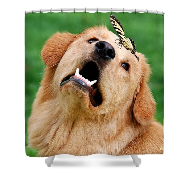 Dog And Butterfly Shower Curtain by Christina Rollo