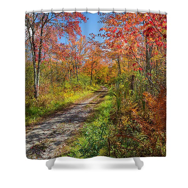 Down The Autumn Road Shower Curtain by Bill  Wakeley