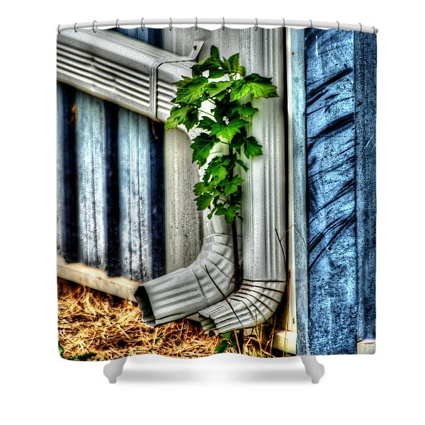 Downspout Shower Curtain by Michael Braham