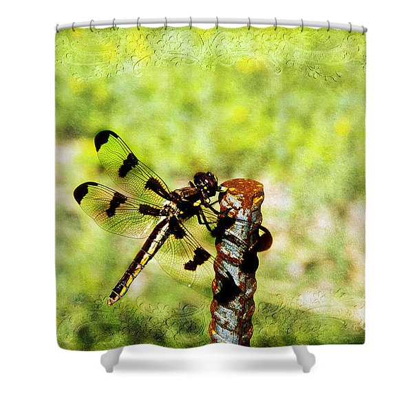 Dragonfly Eating Breakfast Shower Curtain by Andee Design