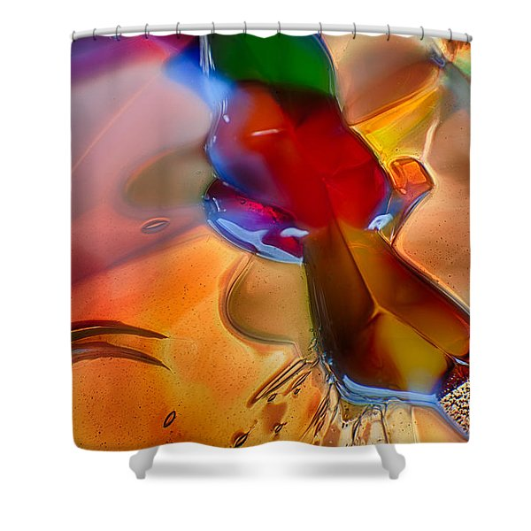 Dragonflying Shower Curtain by Omaste Witkowski