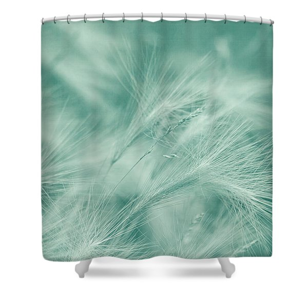 Dream Shower Curtain by Kim Hojnacki