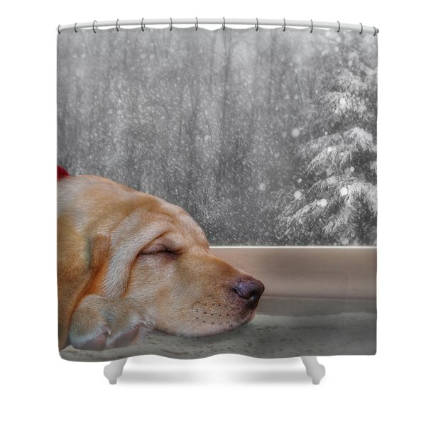 Dreamin' Of A White Christmas 2 Shower Curtain by Lori Deiter